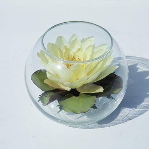 ดอกบัวสดอบแห้งในภาชนะแก้ว FR 38 (1 ดอก)