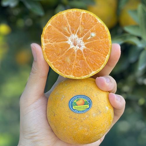 ส้มสายน้ำผึ้ง คัดพิเศษ เกรดพรีเมี่ยม คัดเบอร์ 6 และ 7 น้ำหนักประมาณ 5กก