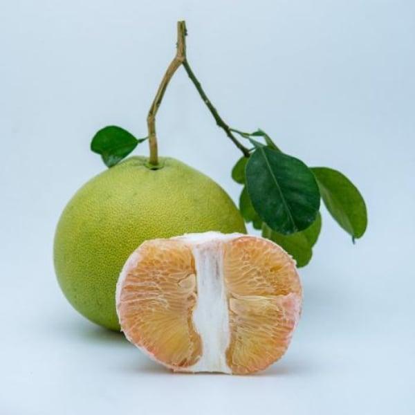 ส้มโอทองดี