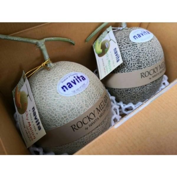 (ของขวัญไปรษณีย์) เมล่อนญี่ปุ่น คัดพิเศษ ชุดกล่องละ2ผล กล่องละ 1,100 บาท (สีส้มและสีเขียว)