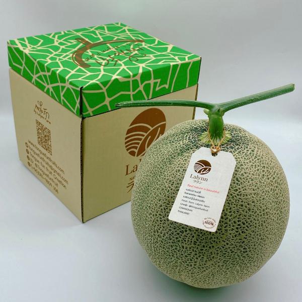 เมล่อนญี่ปุ่นเก็บสดวันนี้ ขายแพ็คคู่ น้ำหนักรวม 4-4.8 กก ขายเหมาๆ ราคา 449 บาท ลงกล่องสวย พร้อมเป็นของขวัญในทุกเทศกาล