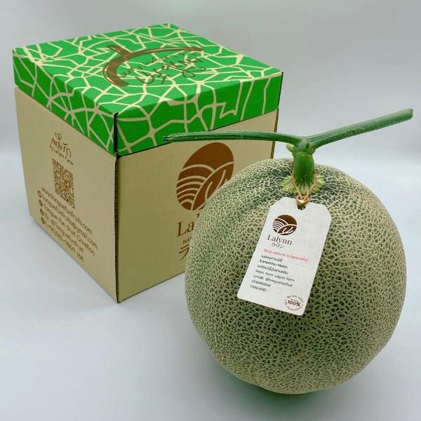 เมล่อนญี่ปุ่น เนื้อสีเขียว ขายแพ็คคู่ น้ำหนักรวม 4- 4.6 กก ขายเหมาๆ ราคา 449 บาท ลงกล่องสวย พร้อมเป็นของขวัญของฝากในทุกเทศกาล