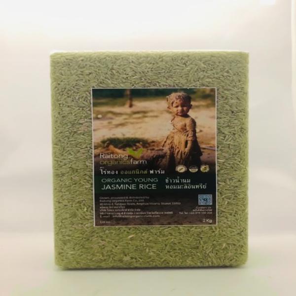 ข้าวน้ำนมหอมมะลิอินทรีย์ - ไร่ทอง ออร์แกนิกส์ ฟาร์ม