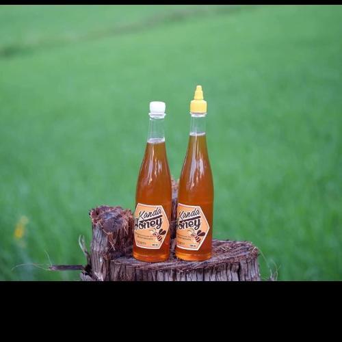 กานดาฟาร์มผึ้ง