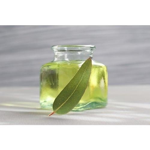 Encalyptus Oil (ยูคาลิปตัส) 450 ml.