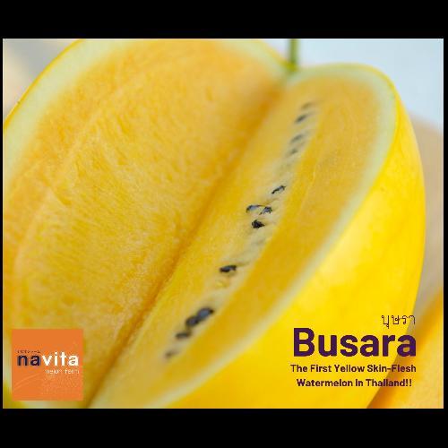 แตงโมบุษรา (Busara) - ผิวสีเหลืองทอง เนื้อสีเหลือง