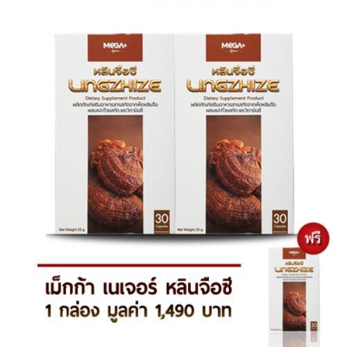 ซื้อ 2 แถม 1 ผลิตภัณฑ์เสริมอาหารสารสกัดจากเห็ดหลินจือ ผสมใบแปะก๊วยสกัดและวิตามินซี (เซ็ตบำรุงสุขภาพ)