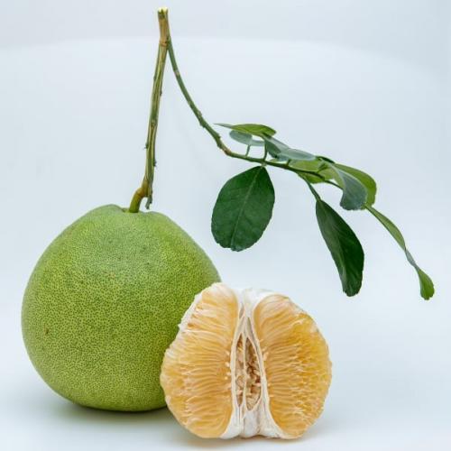 ส้มโอขาวน้ำผึ้ง เกรด Premium A++ จำนวน 1 ผล