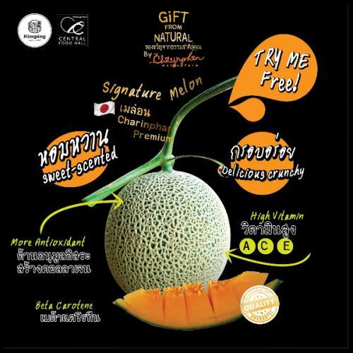 เมล่อนญี่ปุ่นพันธุ์ Ka-Ne-Mi-Tsu Melon จากไร่ชรินทร์พรรณ เชียงใหม่ จำนวน 4 ลูก/กล่อง
