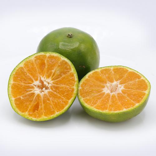 ส้มสายน้ำผึ้ง เบอร์จัมโบ้ เกรดส่งออก 3 กก