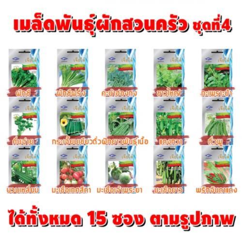 เมล็ดพันธุ์ผัก SET4 (ชุด15ซอง)