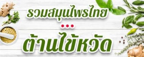 สมุนไพรไทย ต้านไข้หวัด